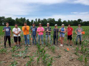 Corn Maze Crew