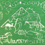 2009 Suter Egypt Corn Maze