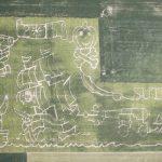 2015 Suter Pirate Maze