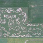 2017 Suter Dinosaur Maze