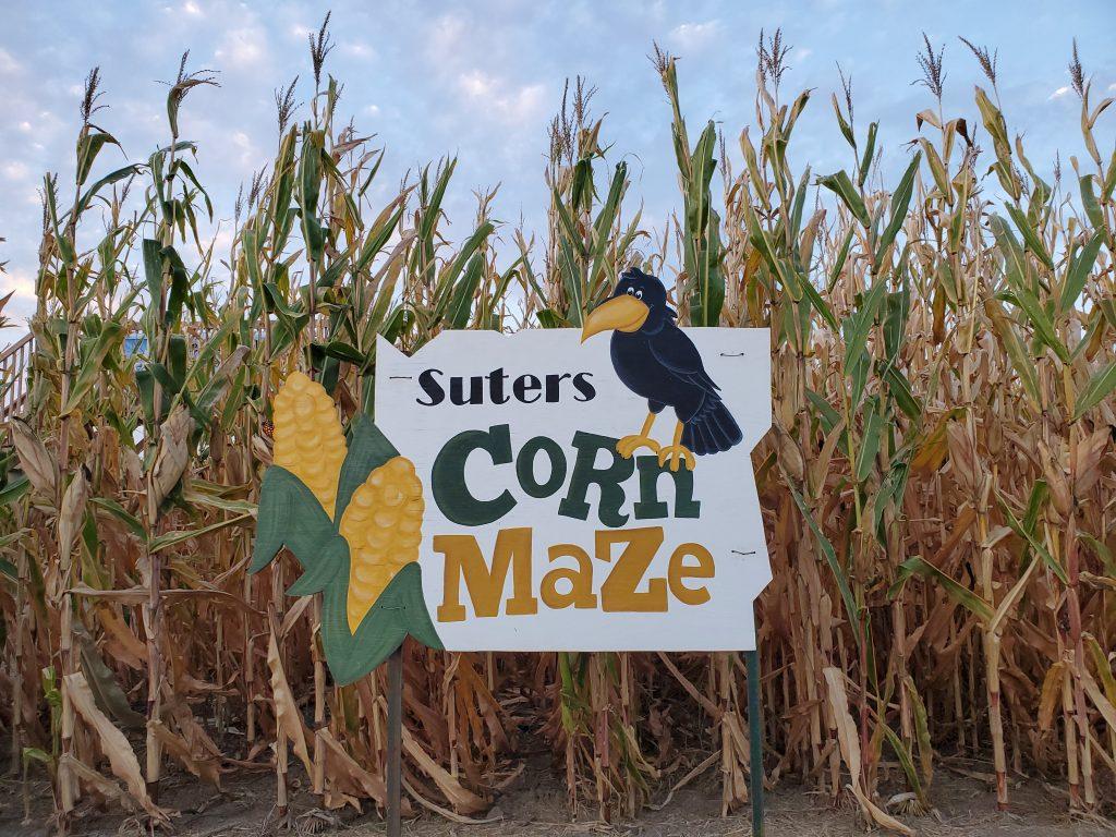 Corn Maze Entrance Sign
